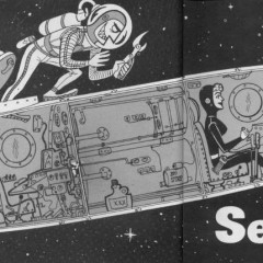 Sex In Space