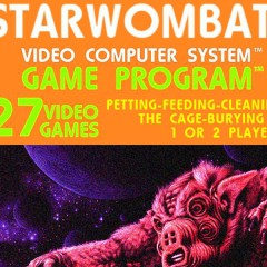 Rare Atari Game – Starwombat